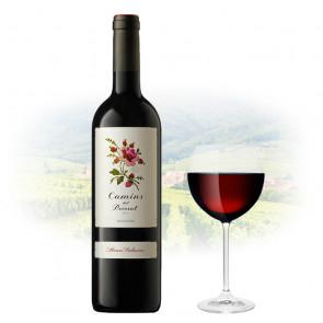 Alvaro Palacios - Camins del Priorat   Spanish Red Wine