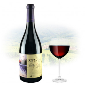 Montes Folly Syrah 2012 1.5L Magnum | Philippines Manila Wine