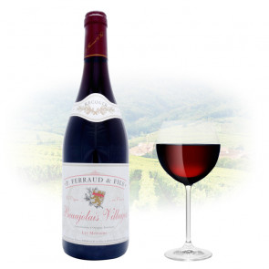 Beaujolais Villages 2010 | Philippines Wine
