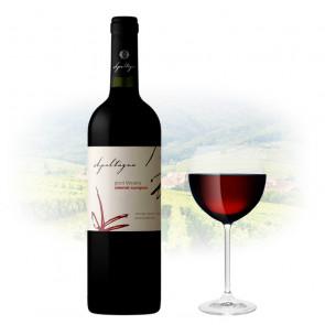 Apaltagua - Gran Verano Cabernet Sauvignon | Chilean Red Wine