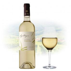 Apaltagua - Gran Verano Sauvignon Blanc | Chilean White Wine