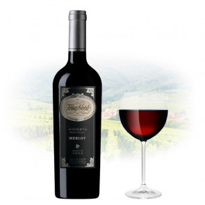 TerraNoble - Reserva Merlot   Chilean Red Wine